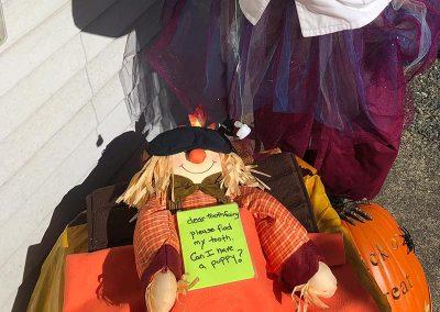 2019 Scarecrow Crawl